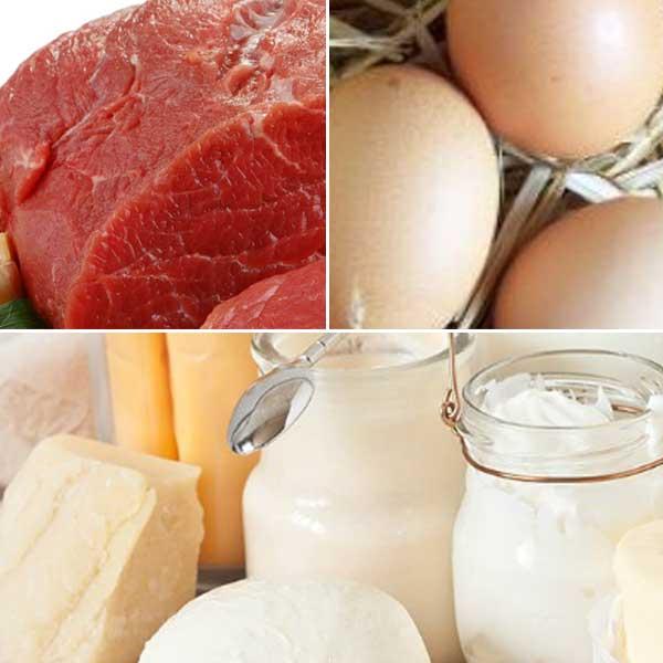 Carne uova latticini